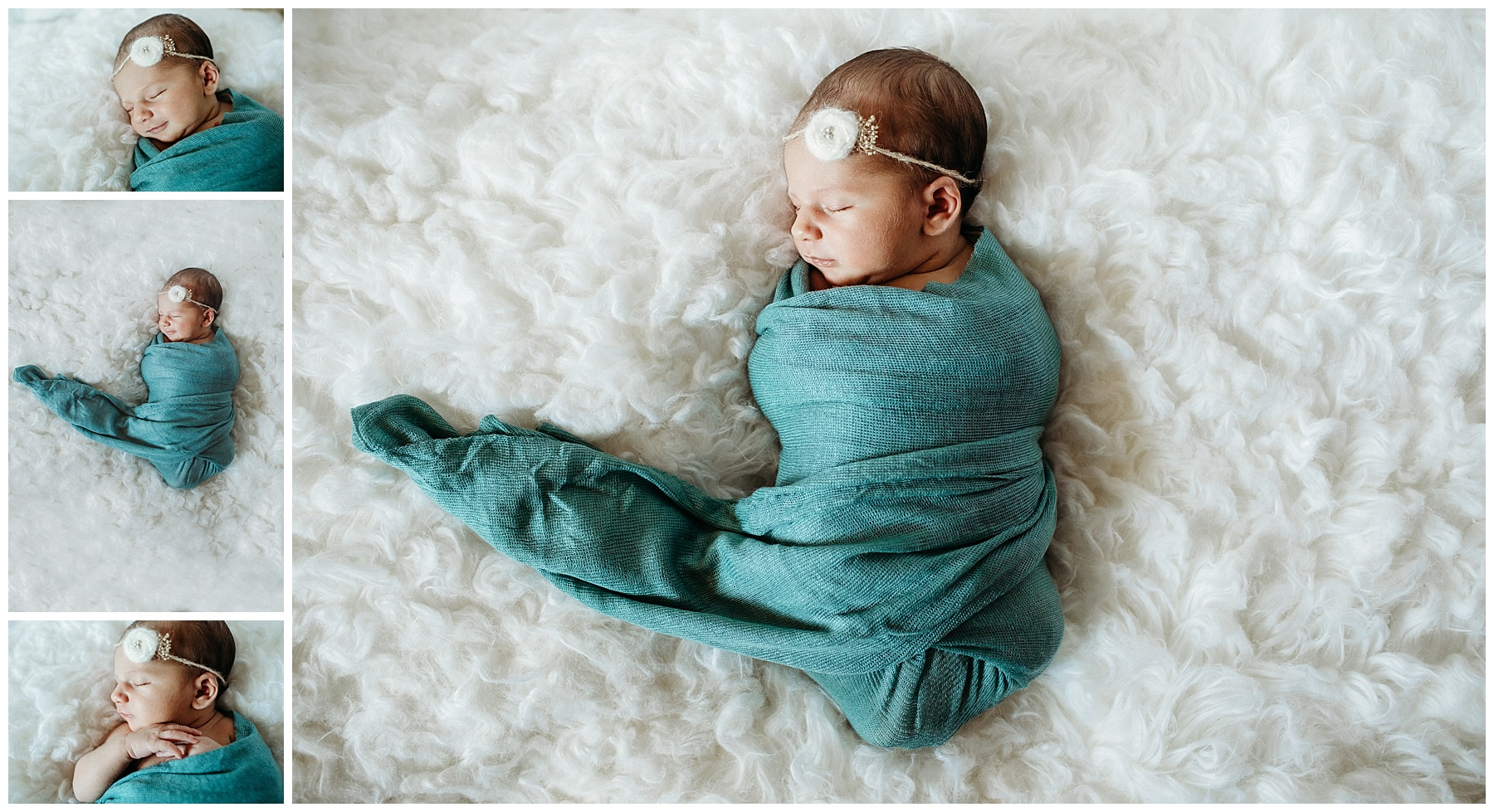 posed newborn